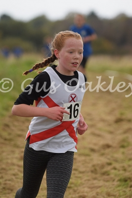 Ayrshire Cross Country Relays 2016