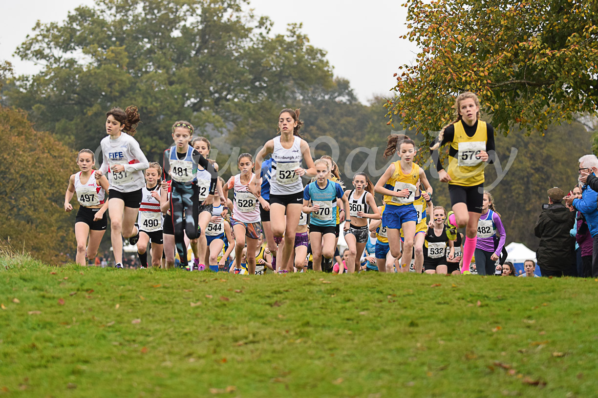 National XC Relay Championships 2016