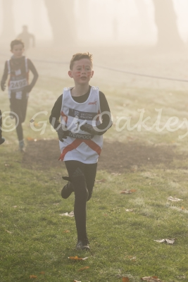 UK Cross Challenge - Liverpool 2016
