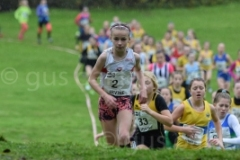 West District XC Relays 2018